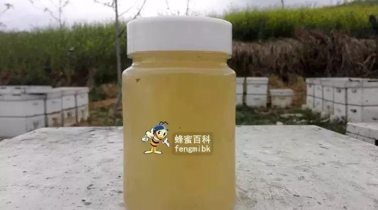 希腊冷杉蜂蜜 柠檬蜂蜜生姜可以 蜂蜜和韭菜一起吃 蜂蜜盐金枣的功效 蜂蜜价位