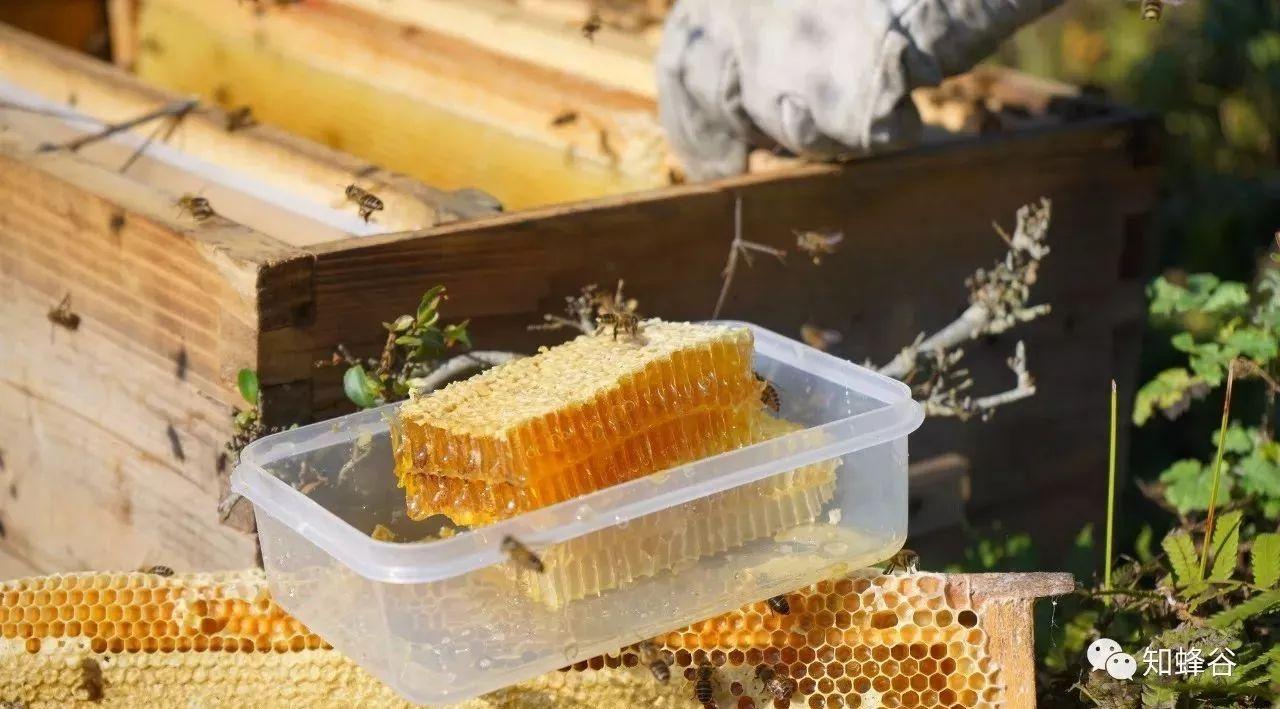 怎么去除蜂蜜杂质 蜂蜜燕麦 小宝宝能吃蜂蜜吗 蜂蜜可以去皱纹吗 澳大利蜂蜜什么牌子好