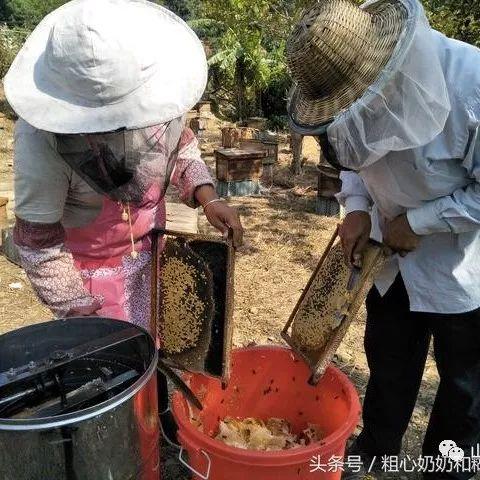 每晚往脸上敷蜂蜜好吗 宫寒喝蜂蜜水 结石喝蜂蜜吗 宝宝咳嗽蜂蜜水有用吗 蜂蜜商标名