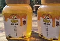 冬季的岭南并不冷,正是鸭脚树冬蜜采蜜的季节