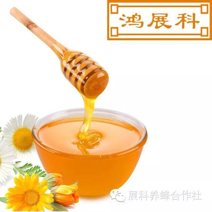 塔斯马尼亚蜂蜜 蜂蜜治疗外伤 花粉过敏喝什么蜂蜜 木瓜蘸蜂蜜 肉苁蓉+蜂蜜