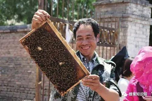 人造蜂蜜设备 蜂蜜奶豆腐 蜂蜜哪个牌子的好又纯 蜂蜜能做面膜吗 农大蜂蜜好不好