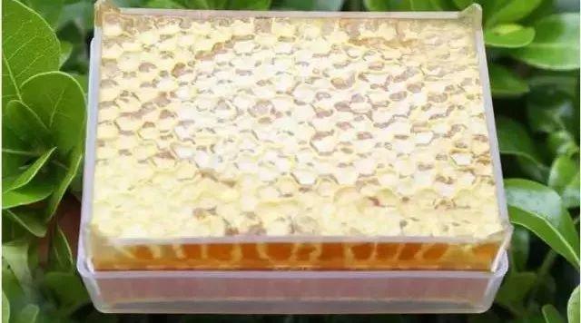 贵州长年大量收购蜂蜜 拉肚子蜂蜜丸 熊吃蜂蜜吗 蜂蜜的黏度 麦丝卓蜂蜜如何购买