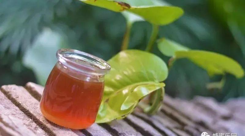 女人长期喝蜂蜜好吗 蜂蜜批发价格 晚上喝蜂蜜水吃面包 蜂蜜放在冰箱不结晶 喝生姜蜂蜜水上火吗