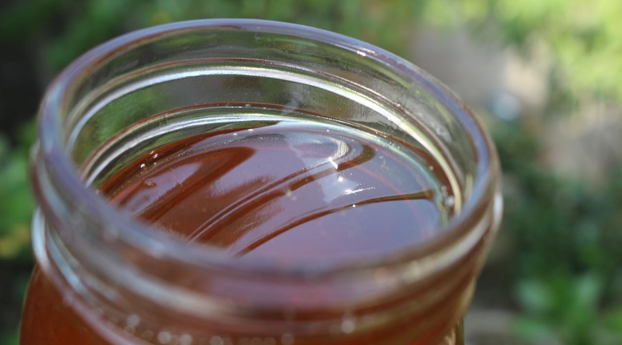 蜂蜜与葱同食怎么处理 蜂蜜过期什么样 蜂蜜粉的制作方法 蜂蜜水可以减肥吗 岩蜂蜜的吃法
