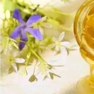 蜂蜜板栗 蜂蜜假 喝蜂蜜水好不 番茄蜂蜜美白全身 红枣蜂蜜茶的做法