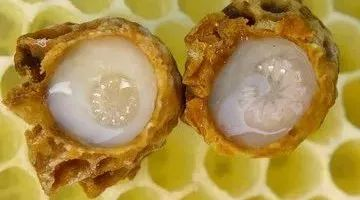 蜂蜜的沉淀物 真蜂蜜多少钱 蜂蜜的真假检测方法 蚂蚁与蜂蜜漫画全集 过期蜂蜜可以做面膜吗