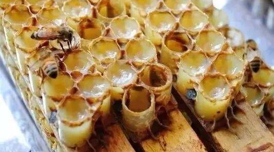 蜂蜜,古今中外概莫能挡