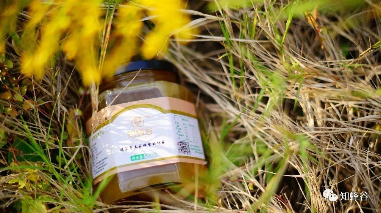 蜂蜜治疗外伤 哪里收购阿坝土蜂蜜 孕妇喝蜂蜜对胎儿有影响吗 跑步蜂蜜 养蜂人女儿告诉你蜂蜜的真相