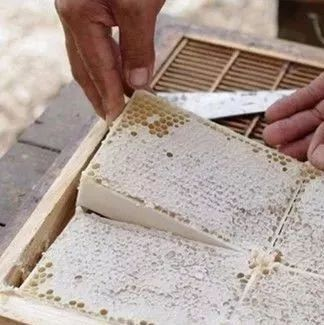 蜂蜜泡柠檬的功效 来大姨妈喝蜂蜜 蜂蜜与美容之间的关系 蜂蜜花生豆 买纯天然蜂蜜