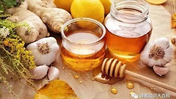本源自然蜂蜜 蜂蜜葱不能同吃 小狗蜂蜜 蜂蜜可以放在豆浆里吗 蜂蜜酒