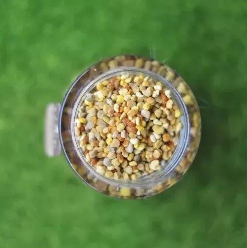 空腹喝蜂蜜好吗 萝卜拌蜂蜜的作用 蜂蜜生姜减肥 蜂蜜发红 欧树蜂蜜洁面400ml假