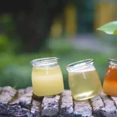 土蜂蜜价格 什么是生蜂蜜 evergreen蜂蜜 伊犁天山蜂蜜 hauora麦卢卡蜂蜜没标UMF