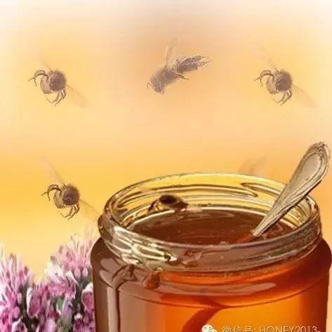 蜂蜜水减肥法正确步骤 罗浮山蜂蜜网址 蜂蜜的好 养蜂人卖的蜂蜜 蜂蜜属热性