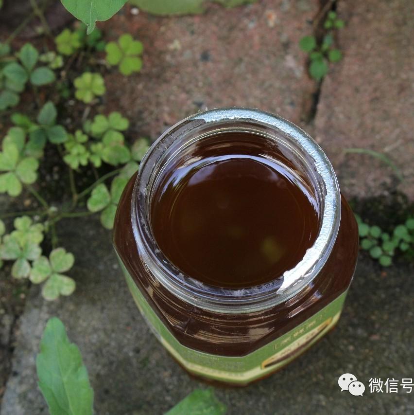 提神喝什么蜂蜜 枣红蜂蜜 蜂蜜主要糖 引入蜂种 萝卜蜂蜜支气管