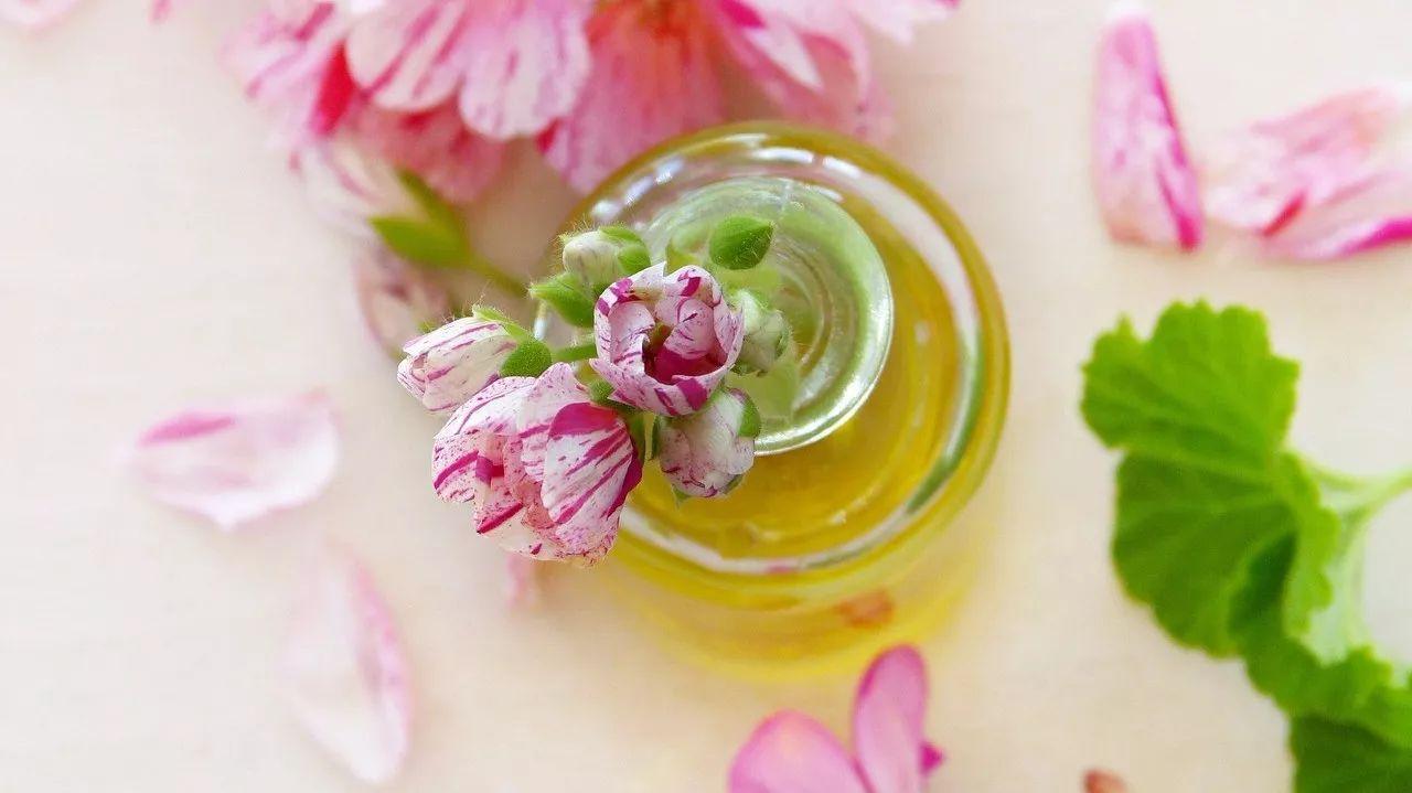 姜末蜂蜜水 蜂蜜蛋糕制作 野蜂蜜不结晶 蜂蜜与蜂花粉 蜂蜜拉丝