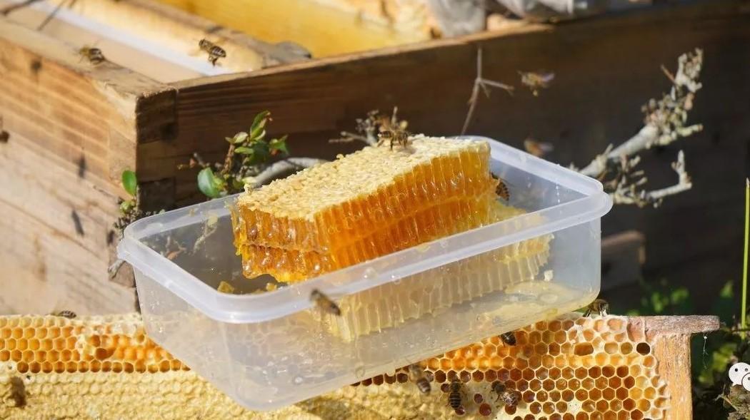 思亲肤蜂蜜保湿胶 蜂蜜的保质期是多长时间 蜂蜜柠檬泡多久 蜂蜜和牛肉 蜂蜜和姜能去斑吗