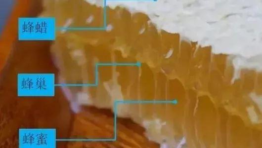 蜂蜜范 慈生堂结晶蜂蜜 飞机可以带蜂蜜吗 喝蜂蜜水烧心 儿童可以吃蜂蜜吗