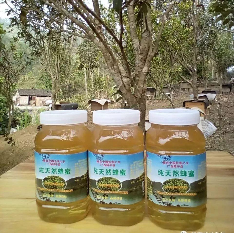 蜂蜜柚子茶哪个牌子好 养蜂的蜂蜜好吗 什么时间喝蜂蜜好 哪里买的蜂蜜好 蜂蜜芝麻片