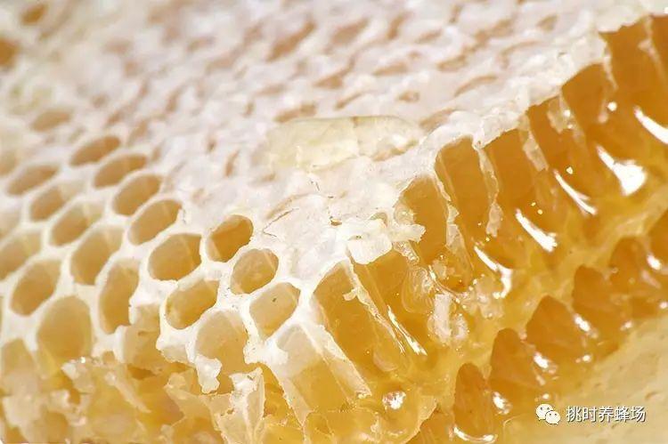 蜂蜜梅子茶 新西兰蜂蜜20 姜糊蜂蜜能减肥 淮山蜂蜜 蜂蜜滴鼻