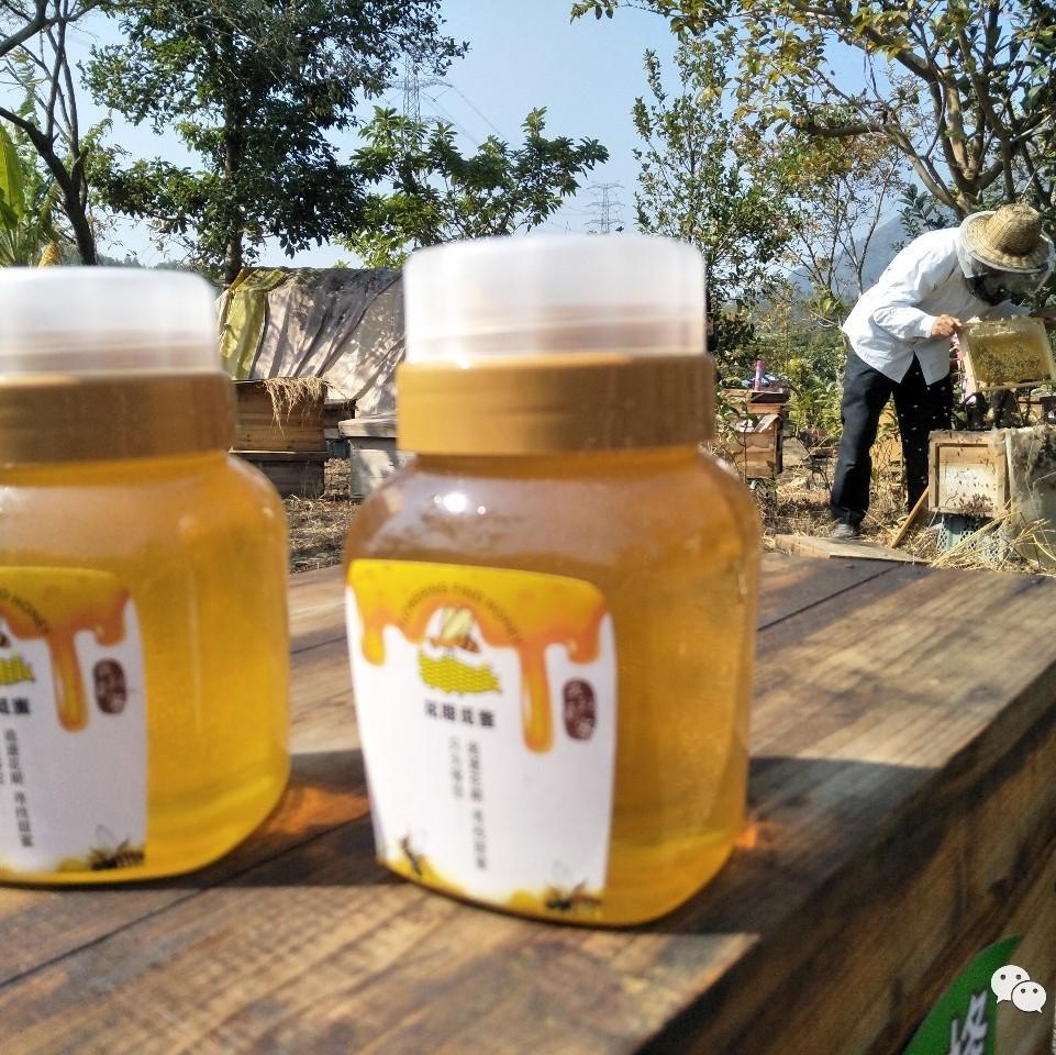 吃中药能喝蜂蜜水吗 熬蜂蜜 蜂蜜醋减肥法 患者 韩国蜂蜜柚子茶牌子