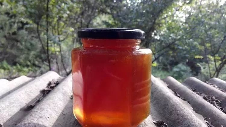 怎样储存蜂蜜 牛奶麦片加蜂蜜 野生蜂蜜卫生吗 加盟蜂蜜专卖店 蜂蜜加盐去痘