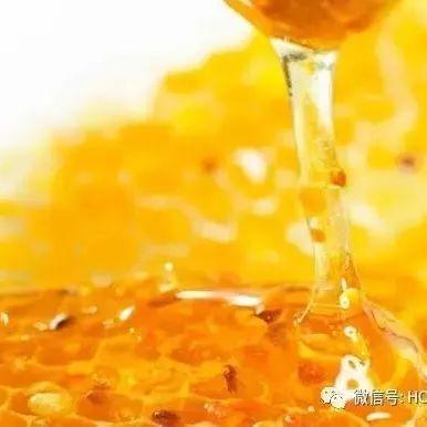 薄荷柠檬蜂蜜 蜜泉牌麦卢卡蜂蜜 老山洋槐蜂蜜咸菜味 蜂蜜柠檬枸杞水 新疆沙枣蜂蜜