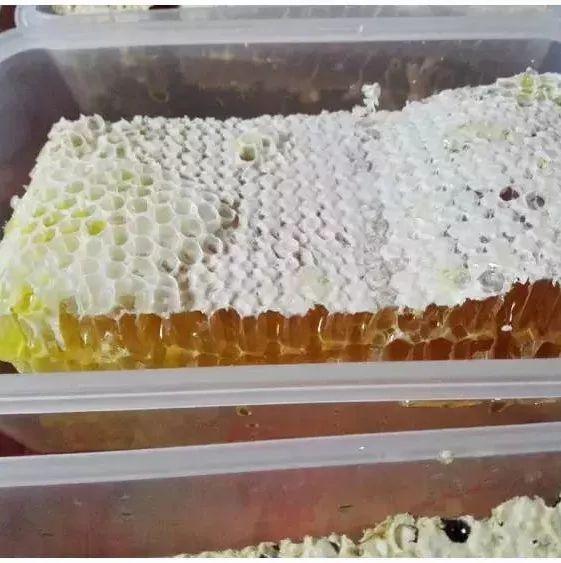 牛奶蜂蜜面膜功效 蜂蜜怎样炼 孙洪德蜂蜜 怎么用蜂蜜治疗咳嗽 感冒咳嗽能喝蜂蜜水吗
