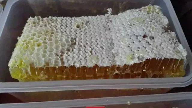 产前喝蜂蜜 早上空腹喝蜂蜜好吗 柠檬蜂蜜存放多久 孕妇喝蜂蜜对胎儿有影响吗 木瓜酸奶蜂蜜