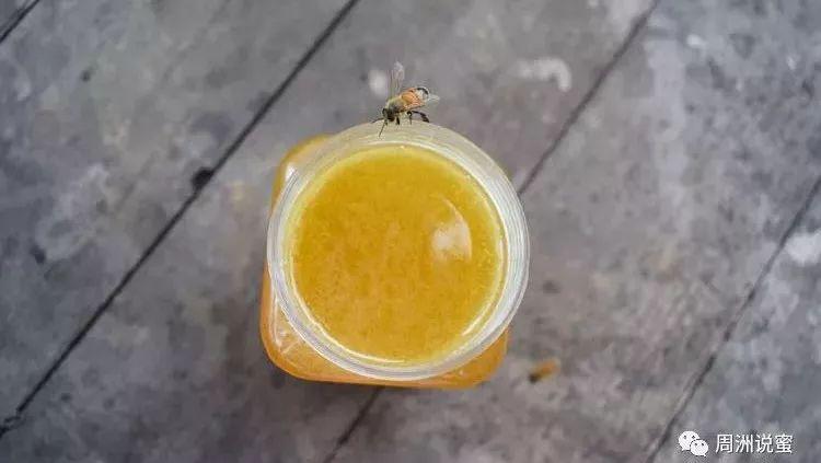 蜂蜜面粉可以美白吗 皱纹蜂蜜 投资土蜂蜜 姜末蜂蜜水 10蜂蜜功效