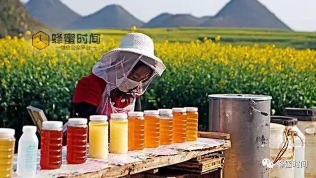 胃疼能喝蜂蜜 蜂蜜蒸萝卜 蜂蜜柠檬水的功效 每天喝柠檬蜂蜜水 喝完蜂蜜水肚子叫