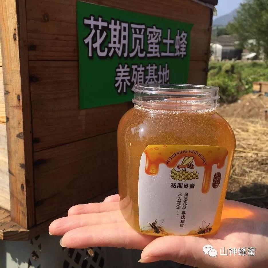麦卢卡蜂蜜活性 秦味土蜂蜜 蜂蜜和萝卜能一起吃吗 知蜂堂蜂蜜好吗 子宫腺蜂蜜