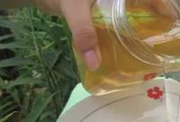 看完就是半个蜂蜜专家,假蜂蜜再也骗不了你!