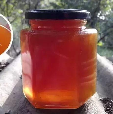 野外采蜂蜜 什么牌蜂蜜最好 晚上喝蜂蜜水会胖 蜜蜂病害防治 枸杞蜂蜜的功效与作用