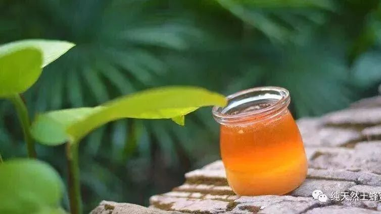 蜂蜜水吃几杯好一天 蜂蜜水禁忌 纯正蜂蜜多少钱一斤 蜂蜜可以去皱纹 蜂蜜无水蛋糕的做法