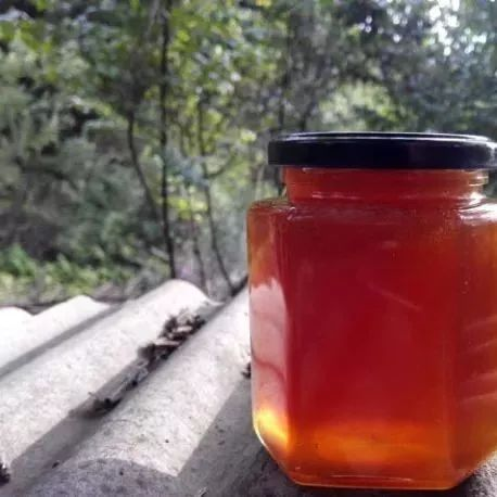 进口蜂蜜的手续 蜂蜜柚子茶发霉怎么办 蜂蜜柚子茶哪个牌子好 蜂蜜治拉肚子 肉桂和蜂蜜小孩能吃吗