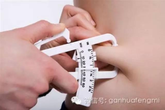 减肥,真的是因为脂肪吗?