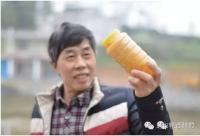 父亲节到了,送瓶蜂蜜给老爸...