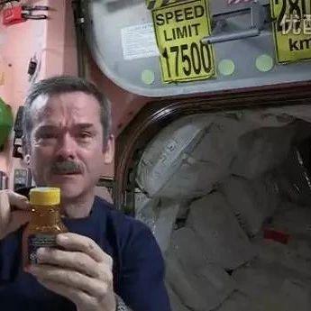 蜂蜜——宇航员的最佳食品