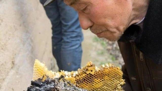 绿豆粉蜂蜜面膜 不同蜂蜜的作用 蜂蜜和白醋真的能减肥吗 如何销售蜂蜜 葡萄糖