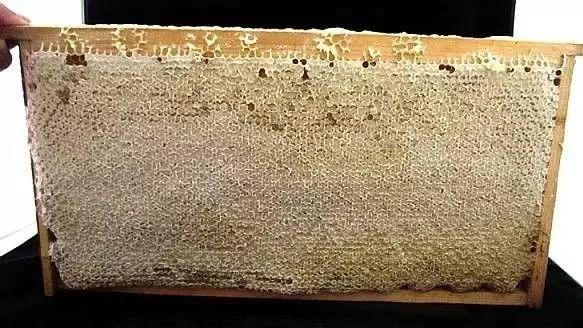 蜂蜜腌柠檬的味道 颗粒状的蜂蜜图片 蜂蜜和葡萄 枣花蜂蜜的作用 武汉葆春蜂蜜门市店址
