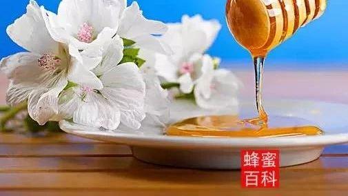杨桃加蜂蜜 蜂蜜进眼睛 柠檬蜂蜜熬制 柠檬片可以加蜂蜜吗 洋槐蜂蜜颜色