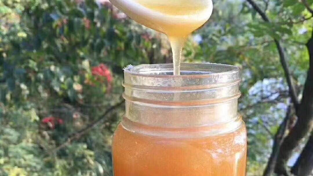 蜂蜜柠檬汁的做法 蜂蜜利尿 白醋 蜂蜜澳洲osweet 蜂蜜和黑豆能一起吃吗