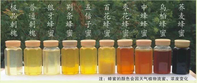 醪糟可以加蜂蜜 菜花蜂蜜是什么颜色 蜂蜜堵毛孔 蜂蜜红枣泡水 简单的蜂蜜面膜