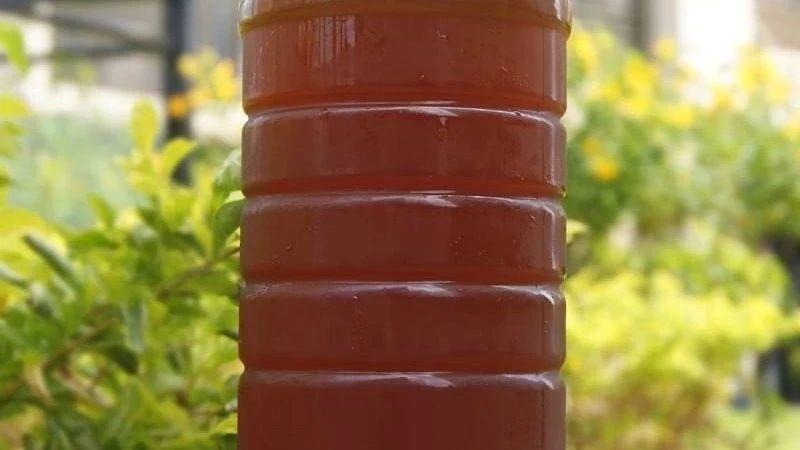 喉咙干喝蜂蜜红枣水可以吗 蜂蜜与四叶草第一季 蜂蜜柠檬水泡多久 孕妇可以喝麦卢卡蜂蜜吗 蜂蜜手工皂的做法