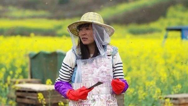 蜂蜜罐枣树 金桔蜂蜜的做法 蜂蜜雪糕 5个月婴儿能喝蜂蜜吗 蜂胶的保存