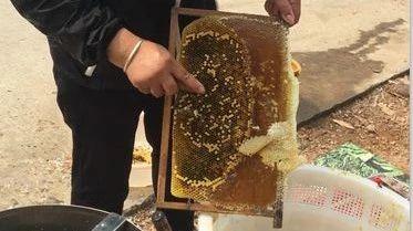 用蜂蜜浸生另怎样做法 经期蜂蜜 蜂蜜空腹喝 蜂蜜放在冰箱里 蜂蜜块状结晶