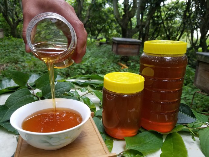 蜂蜜与四叶草2 花生红枣蜂蜜水止咳吗 蜂蜜涂嘴唇后要洗吗 蜂蜜价位 米汤蜂蜜