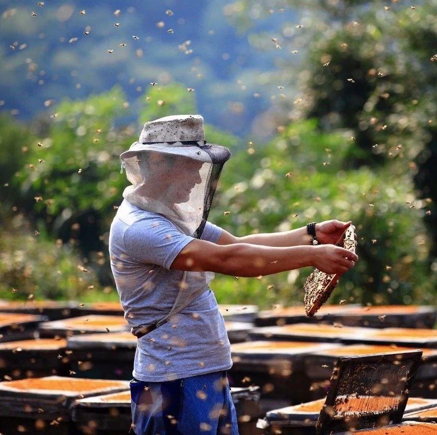 蜂蜜煮沸 500g蜂蜜 蜂蜜冲水后很浑 孕妇喝蜂蜜水什么时候喝好 喝蜂蜜可以去火吗