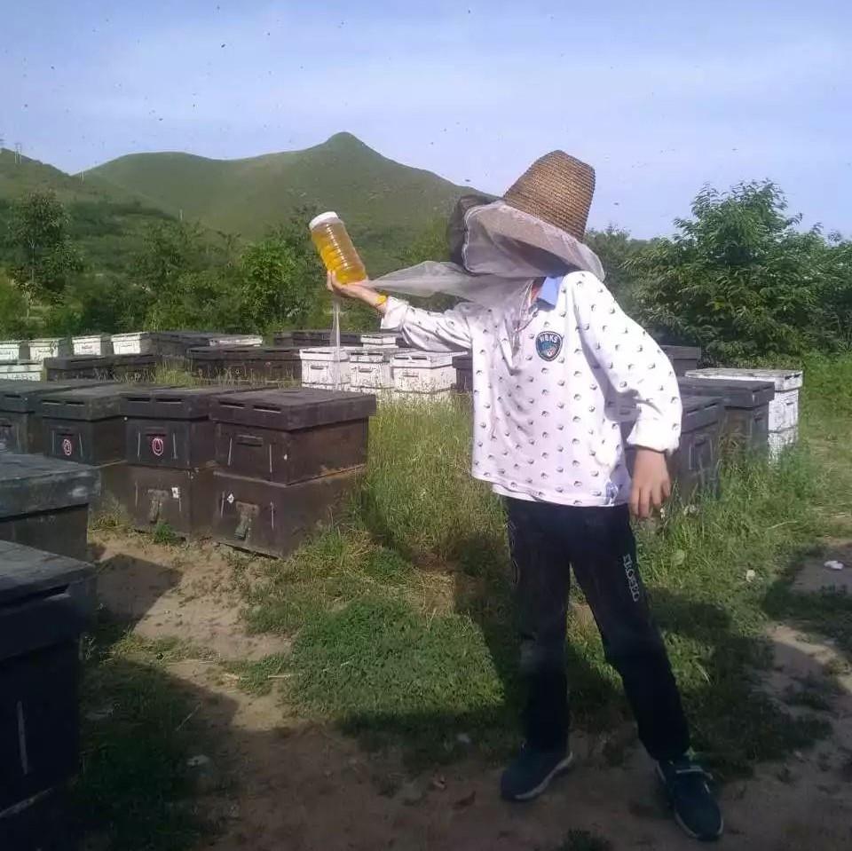 6个月宝宝可以吃蜂蜜 喝蜂蜜水减肥吗 鸡蛋羹蜂蜜 真蜂蜜的颜色 假岩蜂蜜